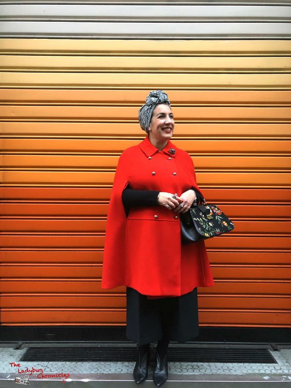 The Ladybug Chronicles Red Cape (5)