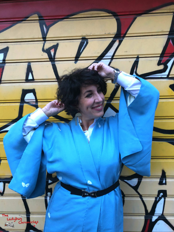 The Ladybug Chronicles Vintage Kimono (5)