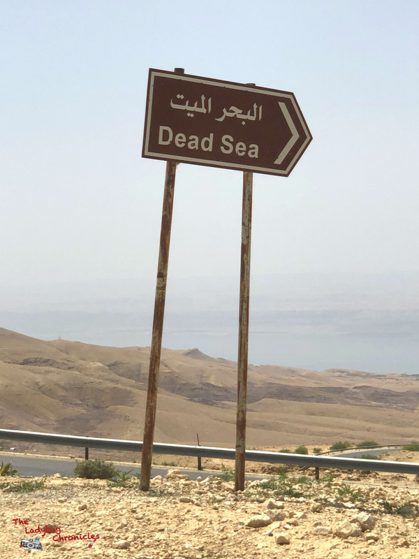 The Ladybug Chronicles Madaba Dead Sea (10)