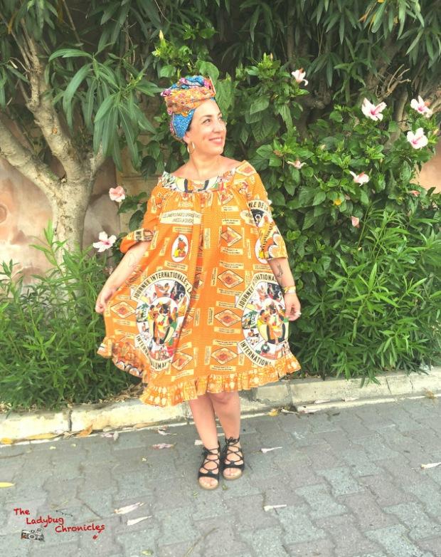 The Ladybug Chronicles Wax Vintage Dress (1)