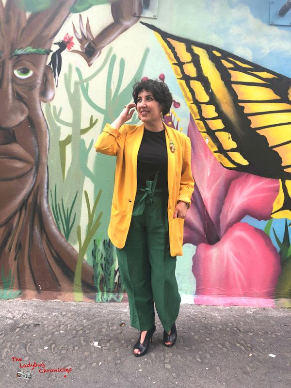 The Ladybug Chronicles Butterflies (3)