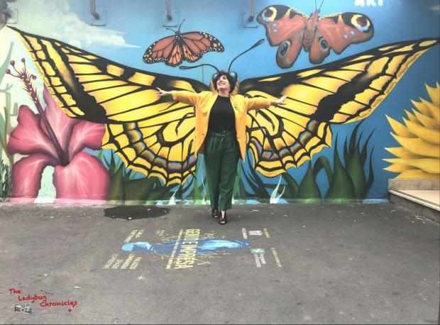 The Ladybug Chronicles Butterflies (6)